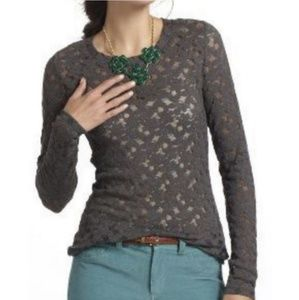Anthropologie Eloise Brushed Stretch Lace Top - L